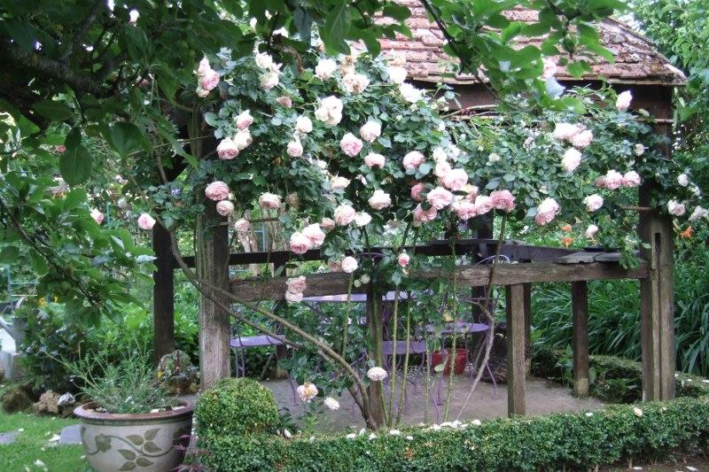 jardin de poesie 2