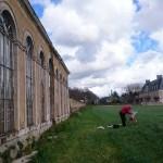 L'orangerie du chateau